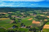 文化和旅游部等17部门明确促进乡村旅游可持续发展五项措施