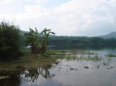 海南:当好河长湖长 做好护水文章