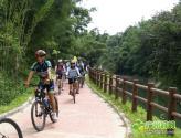 广州:绿道连城乡 注入新活力