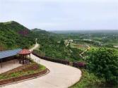 杨梅小镇:  绿色生态产业链打造新农村新玩法