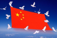 社会主义是中国道路的真正底色