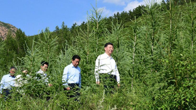 习近平深入喀喇沁旗林场农村考察调研