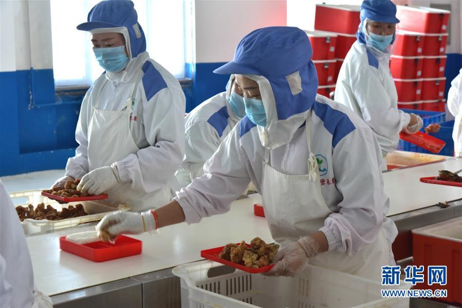 (在习近平新时代中国特色社会主义思想指引下――新时代新作为新篇章・总书记关心的百姓身边事・图文互动)(4)一蔬一饭都是爱――3700万农村娃的营养餐故事