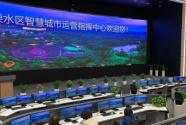 南京市溧水区深入学习贯彻十九届四中全会精神 打造人民满意的全国一流智慧城市