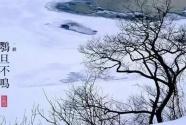今日大雪丨养生七事要注意