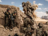600万美元空运山羊 美军在阿富汗