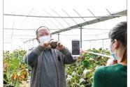 《2020年春耕生产专刊》出版 将免费发放到全国800个产粮大县