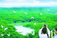 """中国生态文明建设助世界美化""""容颜"""""""