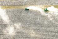 发展现代农业 保障丰产丰收