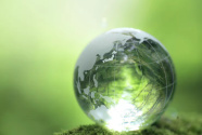世界地球日,東莞生態治理故事在歐洲傳播