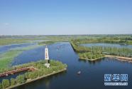 水岸同治 生態宜人——海河流域水生態環境治理見聞